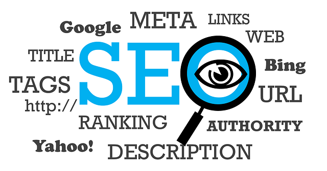 Online Search Strategy by Plano SEO Experts